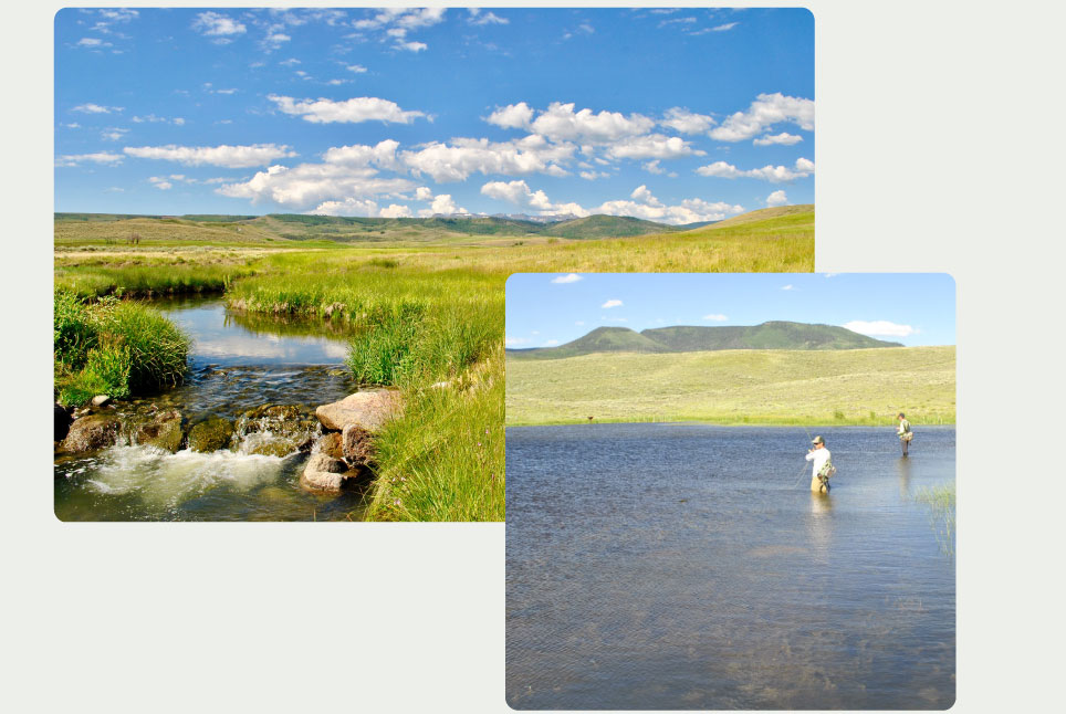 Finger-Rock-Preserve-Fishing-Stream
