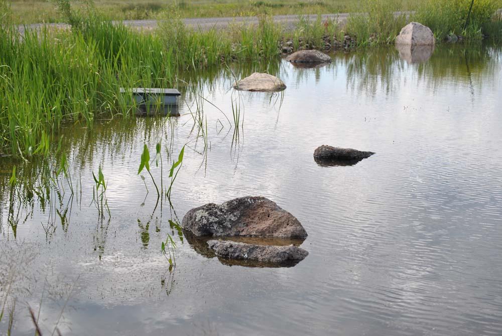 Small boulders inside a pond at Finger Rock Preserve.